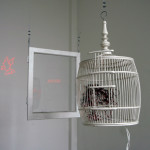 Tomoyuki Ueno, Blaze up, laser-pointers, birdcage, window, 2009, ©Tomoyuki Ueno