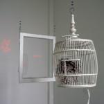 Tomoyuki Ueno, Blaze up, laser-pointers, birdcage, window, 2009, ©Tomoyuki Ueno